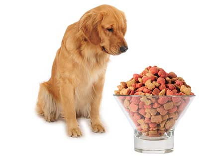 The pet food packaging solutions include variety of stand up pouches & flat pouches which can be customised in all material combinations.